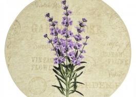 Covoras de baie, Alessia Home, Lavender DJT, 100 cm
