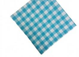 Fata de masa 140x140cm carouri bleu cu alb