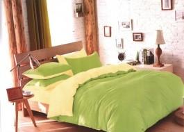 Oferta 1+1gratis: Lenjerie de pat dublu 4 piese verde pal cu bej MX16